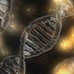 Beneficios de la regeneración celular