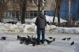 Hombre alimentando palomas en la ciudad