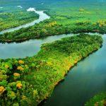 Beneficios de un ecosistema natural