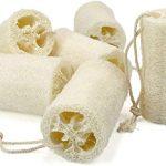¿Qué beneficios tienen las esponjas de luffa?